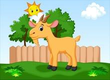 Cute goat cartoon Stock Image