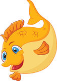 Cute gold fish cartoon Royalty Free Stock Images