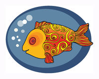 Cute Gold Fish Royalty Free Stock Images