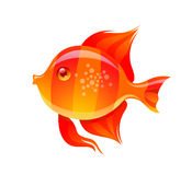 Cute Golden Fish Cartoon Vector Illustration Royalty Free Stock Image