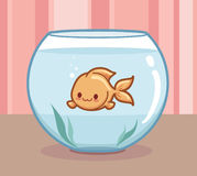 Cute goldfish Stock Image