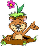 Cute Gopher With Flower Stock Photography
