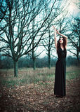 Cute goth girl wearing black dress stands amongst autumnal trees Stock Image