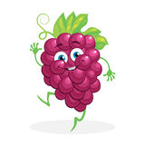 Cute grapes on a white background. Vector Royalty Free Stock Images