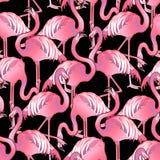 Cute graphic flamingo pattern Stock Photos