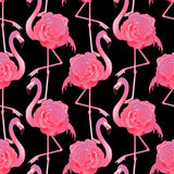 Cute graphic flamingo pattern Stock Photos