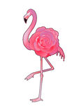 Cute graphic flamingo Stock Photo