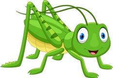 Free Cute Grasshopper Cartoon Stock Images - 123353604