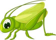 Cute grasshopper cartoon Royalty Free Stock Photos