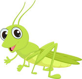 Cute grasshopper cartoon Stock Photo