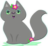 Cute Gray Cat Royalty Free Stock Photos