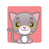 Cute gray cat being happy. Cute gray happy cat sitting Royalty Free Stock Photography