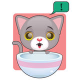 Cute gray cat being hungry. And holding an empty bowl Royalty Free Stock Photo