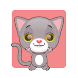 Cute gray cat jumping. For joy Royalty Free Stock Images