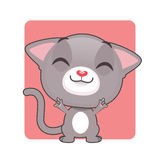 Cute gray cat posing. Cute gray cat rocking out Stock Photography