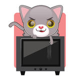 Cute gray cat scratching a television screen. Cute gray cat being naughty and scratching a television screen Royalty Free Stock Image