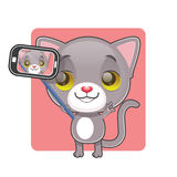 Cute gray cat taking a selfie. Cute gray cat posing to take a selfie Royalty Free Stock Images
