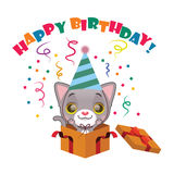 Cute gray kitten with Happy Birthday sign. Cute gray kitten celebrating Birthday with Happy Birthday sign Stock Photos