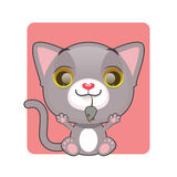 Cute gray kitten holding a mouse in their mouth. Cute gray kitten proudly holding a mouse in their mouth Stock Images