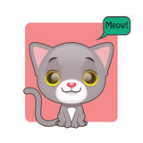 Cute gray kitten meowing. Cute gray kitten with meow speech bubble Royalty Free Stock Images