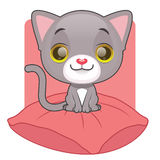 Cute gray kitten sitting on a pillow Royalty Free Stock Photos