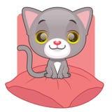 Cute gray kitten sitting on a pillow. Cute gray kitten sitting on top of a comfy pillow Royalty Free Stock Photos