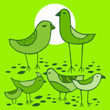 Cute green Birds set. Vector image. Stock Photo