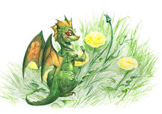 Cute green dragon Stock Photo