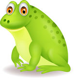 Cute green frog cartoon Royalty Free Stock Image