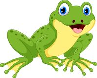 Cute green frog cartoon. Illustration of cute frog cartoon isolated on white background vector illustration