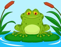 Cute green frog cartoon on a lily pad. Illustration of Cute green frog cartoon on a lily pad Royalty Free Stock Image