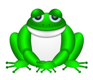 Cute Green Frog Illustration Stock Photo