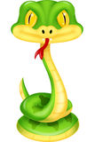 Cute green snake cartoon Royalty Free Stock Photos