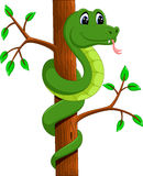 Cute green snake cartoon Stock Image