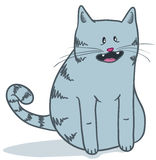Cute grey cat Royalty Free Stock Photo