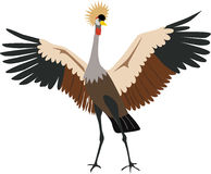 Cute Grey Crowned Crane vector. Cute colorful Grey Crowned Crane cartoon vector royalty free illustration