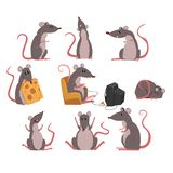 Cute grey mouse set, funny rodent character in different situations vector Illustrations. On a white background Royalty Free Stock Photo
