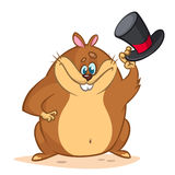 Cute groundhog cartoon with a mayor cylinder. Vector illustration for Groundhog Day. Stock Photography