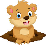 Cute groundhog cartoon Royalty Free Stock Photo
