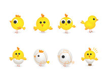 Cute group of yellow chikens Royalty Free Stock Images