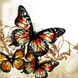 Cute grunge background with butterflies Royalty Free Stock Image