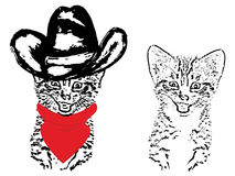 Cute Grunge Cat Cowboy. Abstract grunge portrait of a cat in a cowboy hat on white background Royalty Free Stock Image