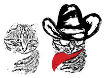 Cute Grunge Cat Cowboy. Abstract grunge portrait of a cat in a cowboy hat on white background Stock Photography