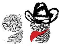 Cute Grunge Cat Cowboy Stock Photography