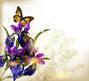 Cute  grunge floral background with blue iris Stock Photography