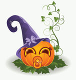 Cute halloween baby pumpkin, vector Royalty Free Stock Photo