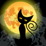 Cute Halloween black cat and full Moon Royalty Free Stock Image