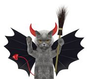 Cute halloween cat in bat devil costume with broom - isolated on white. Background Royalty Free Stock Photography