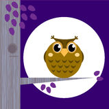 Cute Halloween Owl on Tree Branch with full moon Royalty Free Stock Photography