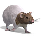 Cute hamster. 3D rendering of a sweet hamster with clipping path and shadow over white vector illustration